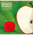 apple natural product poster design vector image