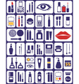 cosmetics icons on white vector image