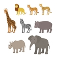 Cartoon set lion leopard cheetah giraffe zebra vector image