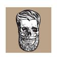 hand drawn human skull with hipster hairdo beard vector image