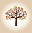color autumn tree vector image