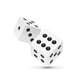 Dice design isolated on white Two dice casino vector image