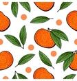 Seamless hand drawn tangerine pattern vector image