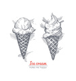 Hand drawn of ice cream vector image