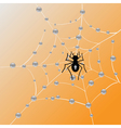 spider annd web vector image