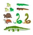 Cartoon set tree frog newt aquatic turtle snake vector image
