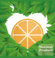 orange natural product leaves shape heart vector image