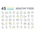 Set Flat Line Icons Healthy Food vector image