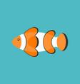 clown fish cartoon flat design icon vector image