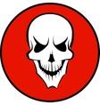 Human white skull vector image