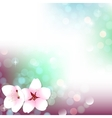 Spring bokeh cherry blossom background vector image