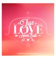 Valentines day set of label badges stamp and des vector image