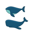 Whale Set Cartoon Style on White Background vector image