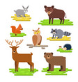 forest animals set flat with vector image