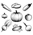 Monochromatic Vegetables Set vector image