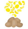 potatoes and potato chips vector image