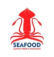 Fresh marine red squid for seafood design vector image