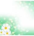 Spring green bokeh background vector image