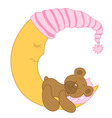 Sleeping Baby Bear vector image