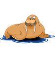 Cartoon walrus vector image