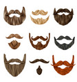 realistic beards and mustache set vector image vector image