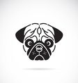 Pugs face vector image vector image