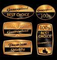 best choice golden set vector image