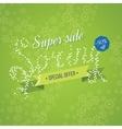 Super Sale banner on a spring background vector image