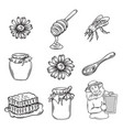 hand drawn honey icons set vector image