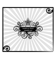 decorative star-frame with spiral elements vector image vector image
