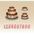 Birthday Cake with Candles Numerals vector image