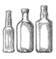 Set bottle for beer whiskey tequila vector image