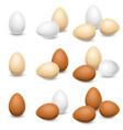 egg set on a white background vector image