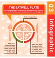 infographic concept eatwell plate vector image