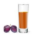 Plum Drink vector image vector image