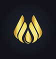 water drop eco wing abstract gold logo vector image