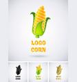 logo corn vector image