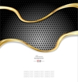 Abstract gold metallic background vector image vector image