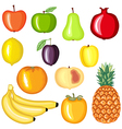 fruit cartoon vector image