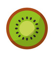 kiwi fresh fruit isolated icon vector image