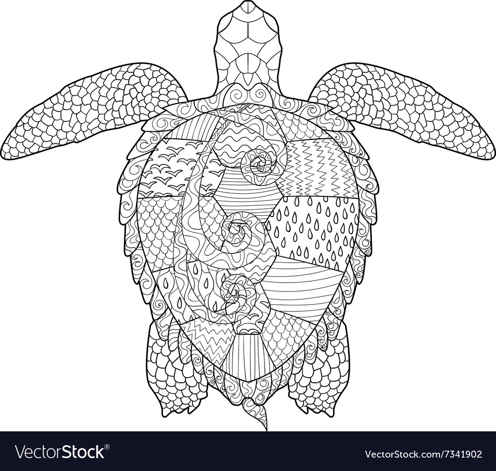 Adult antistress coloring page with turtle vector