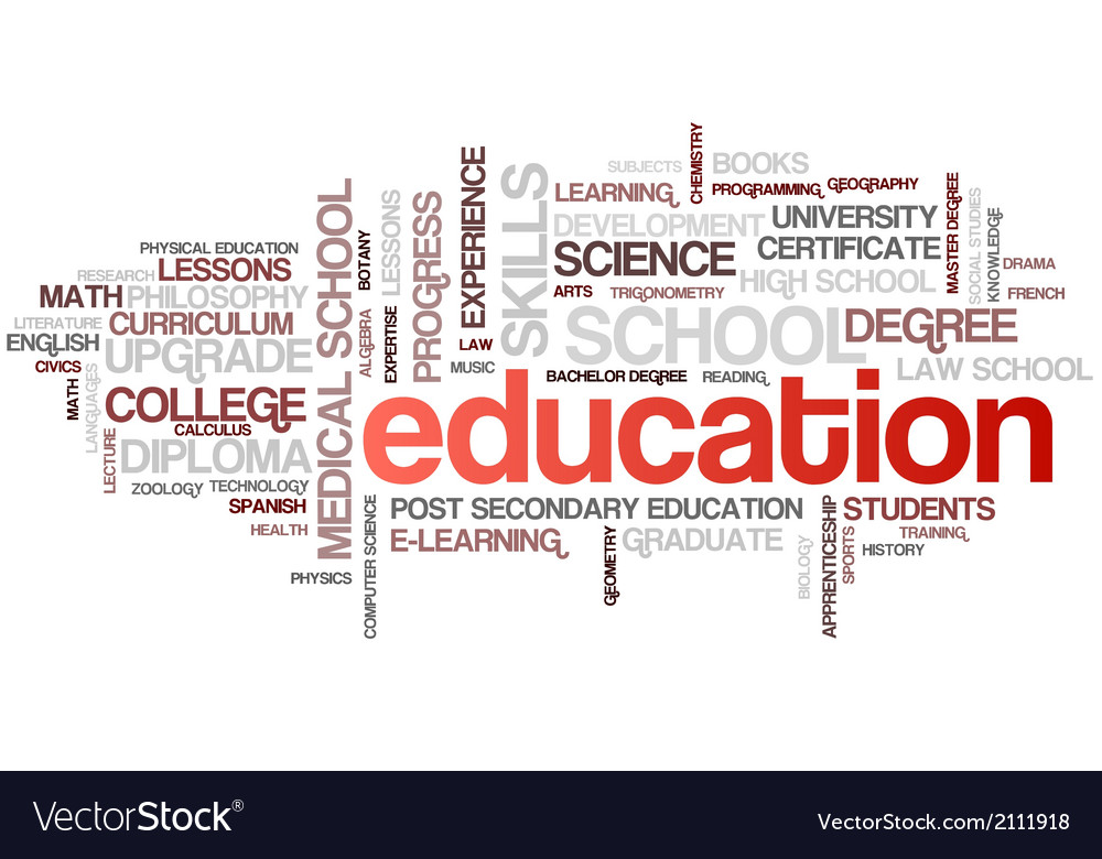 Education word cloud bubble tags tree vector