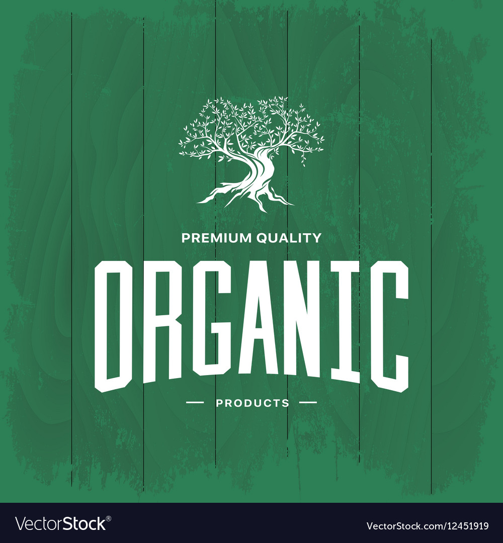 Olive tree vintage logo concept isolated vector