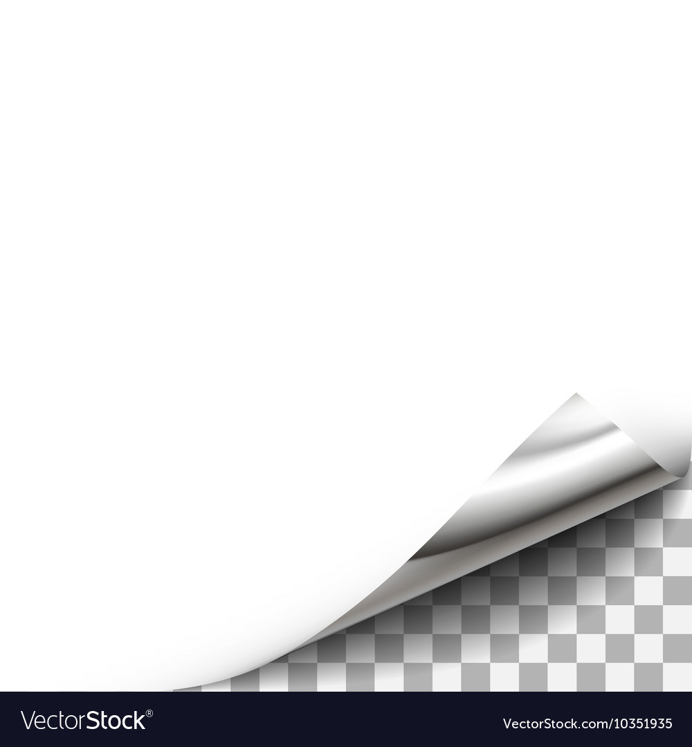 Curled paper corner with transparent background vector