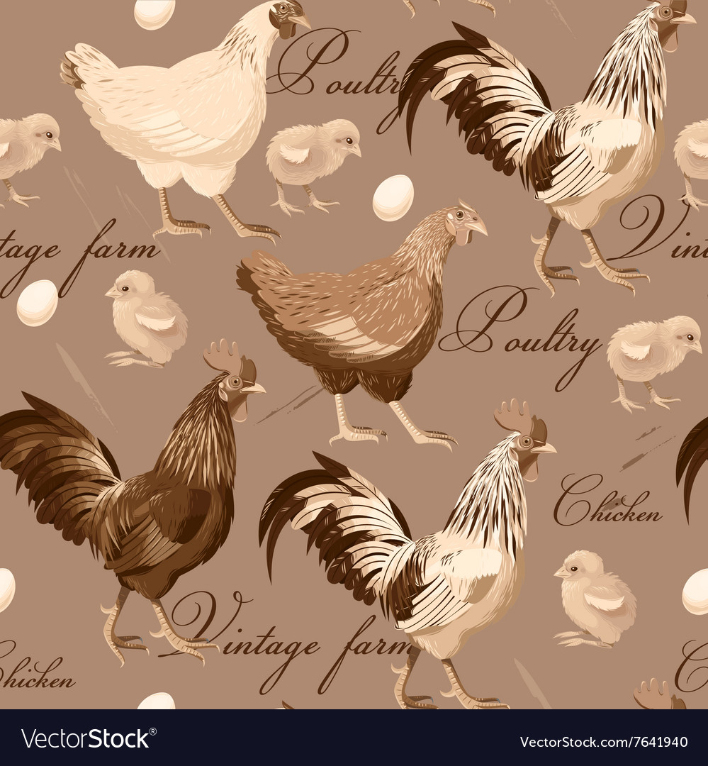 Seamless cocks and hens vector