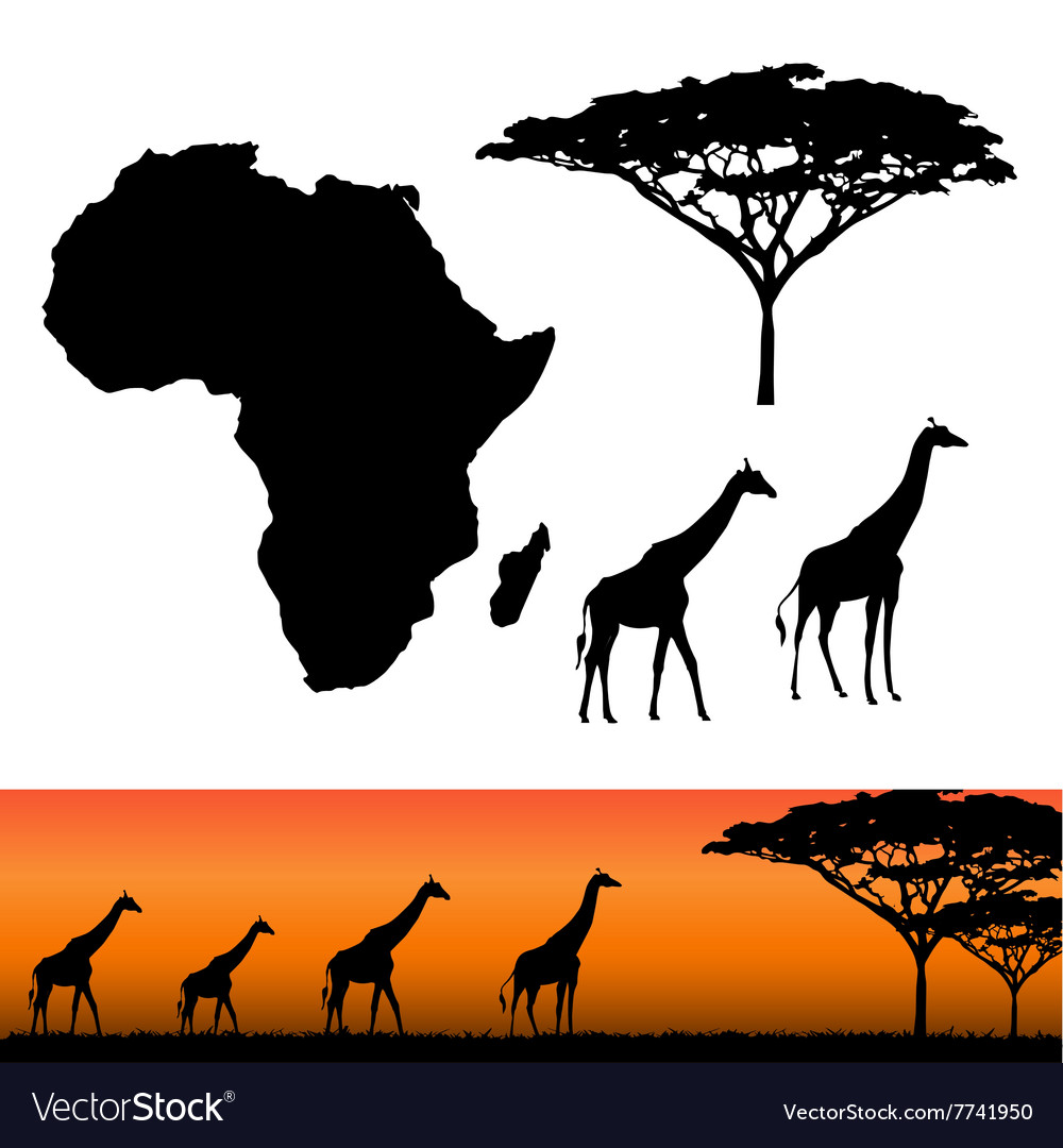 Africa and safari elements vector
