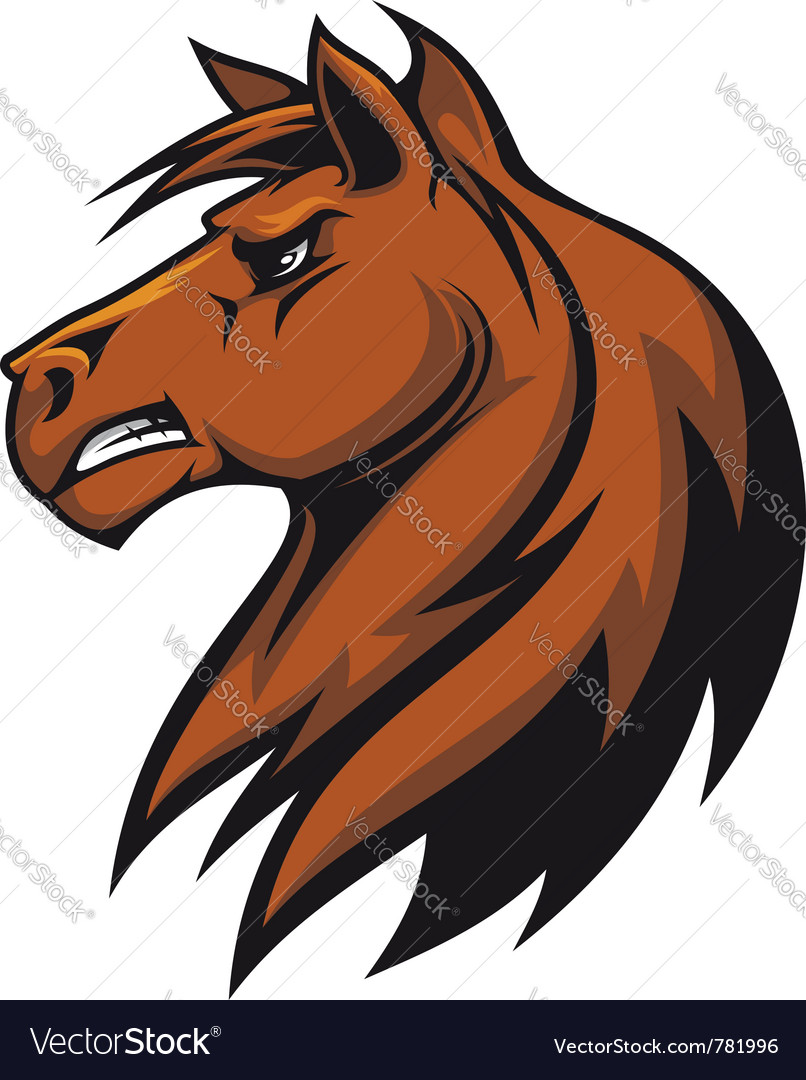 Stallion head vector
