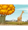 A giraffe near the big tree vector image vector image