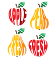 emblem element in form of apple and pear vector image