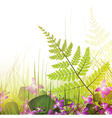 summer meadow with viola flowers vector image vector image